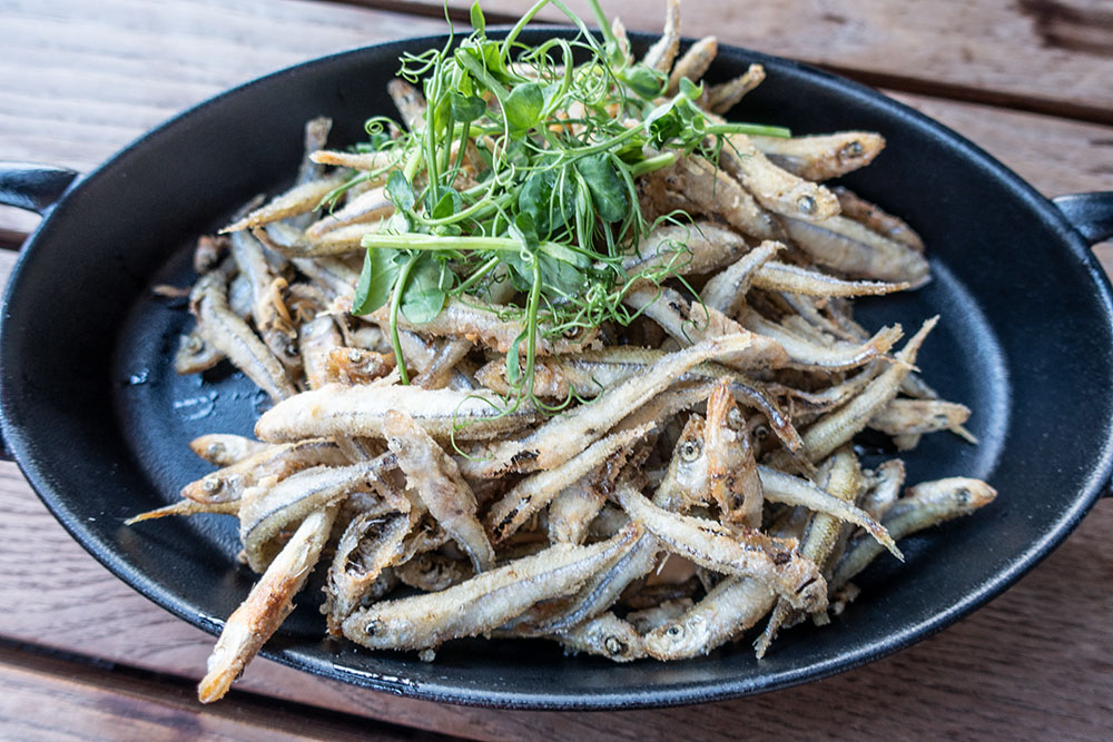 Spelunke Fisch (c) STADTBEKANNT