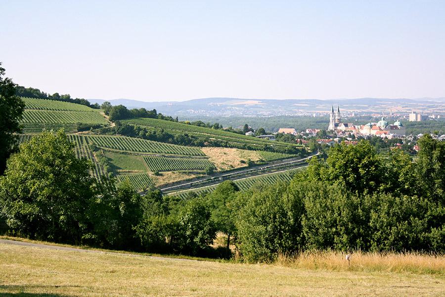 Kahlenbergerdorf (c) STADTBEKANNT Nohl