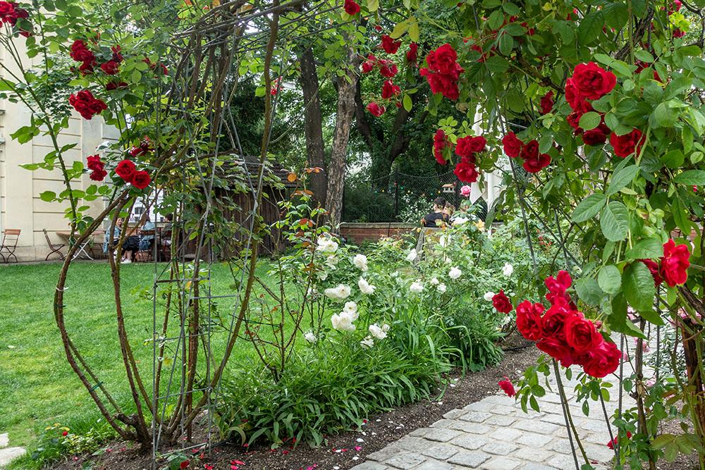 Volkskundemuseum Hildebrandt Cafe Garten Rosen (c) STADTBEKANNT